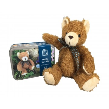 "GIFT IN A TIN"" TEDDY"""